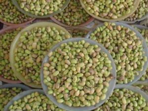 green beans_edited