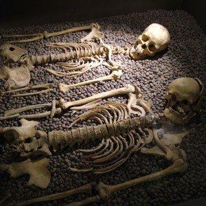 skeletal remains_orig