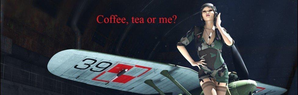 """""""No!"""" to syariah compliant stewardesses"""